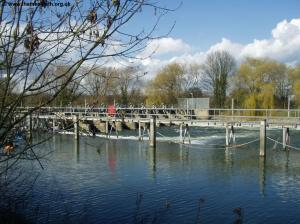 The weir at Old Windsor Lock